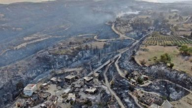 70 out of 81 fire areas contained in Turkey